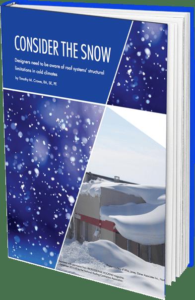 consinder-the-snow-ebook-graphic